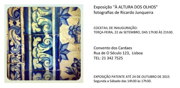 exposição-à-altura-dos-olhos-Ricardo-Junqueira