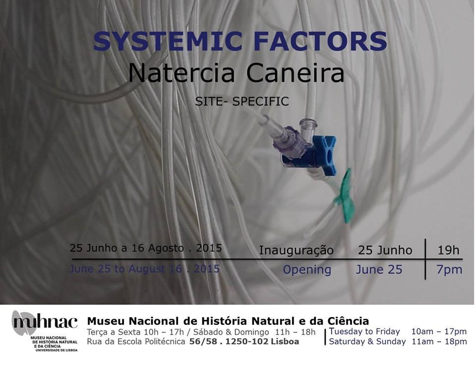 Exposição Systemic Factors de Natercia Caneira